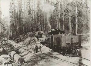 Climax Locomotive on Tiger Mountain