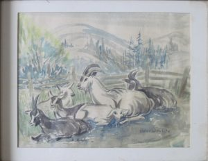 Irv Petite's mother, Jean Wolverton Petite, did a lot of the art work for her son's books. This sketch of Petite's goats is by her.